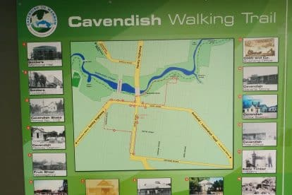Cavendish-13