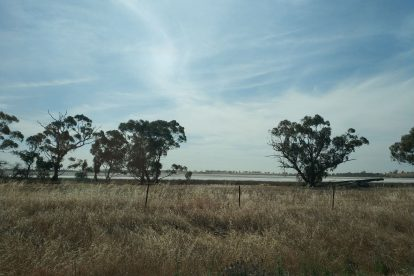 Olivers Lake Nature Conservation Reserve-04