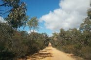 Deep Lead Flora And Fauna Reserve