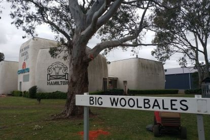 The Big Woolbales-03