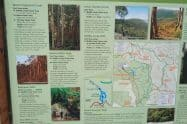 Mount Buangor State Park