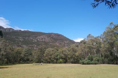 Boronia Peak-01
