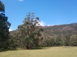 Boronia Peak-02