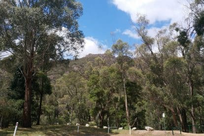 Boronia Peak-04