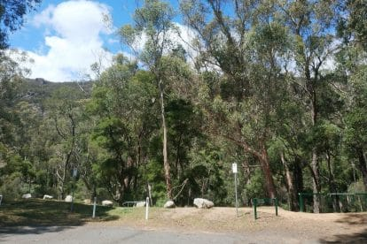 Boronia Peak-11
