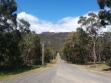 Boronia Peak-13