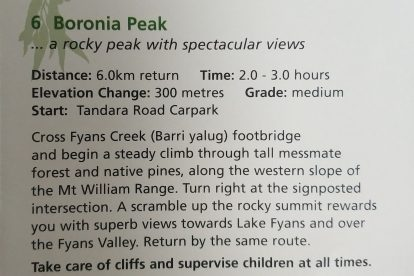 Boronia Peak-14