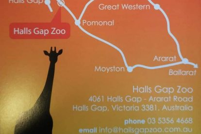 Hall Gap Zoo 01