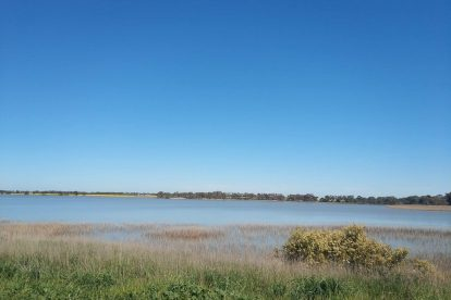 Lake Bolac Attraction-03