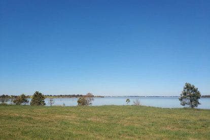 Lake Bolac Attraction-05