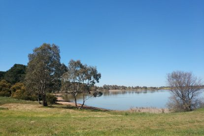 Lake Bolac Attraction-07