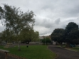 Melville Oval-06